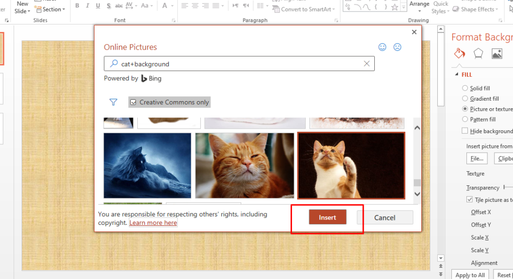 how to add a custom background in PowerPoint